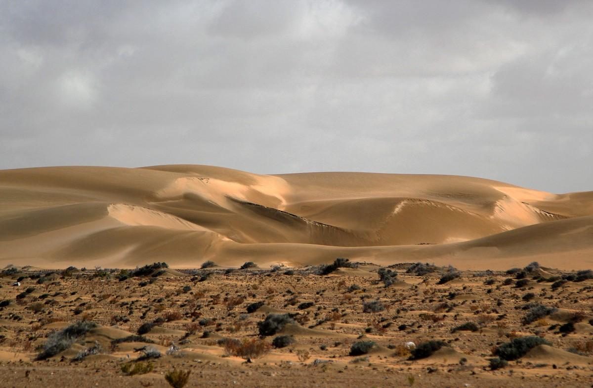 Zdjęcia: gdzieś po drodze, Sahara Zachodnia, Porcja świeżego piasku, MAROKO