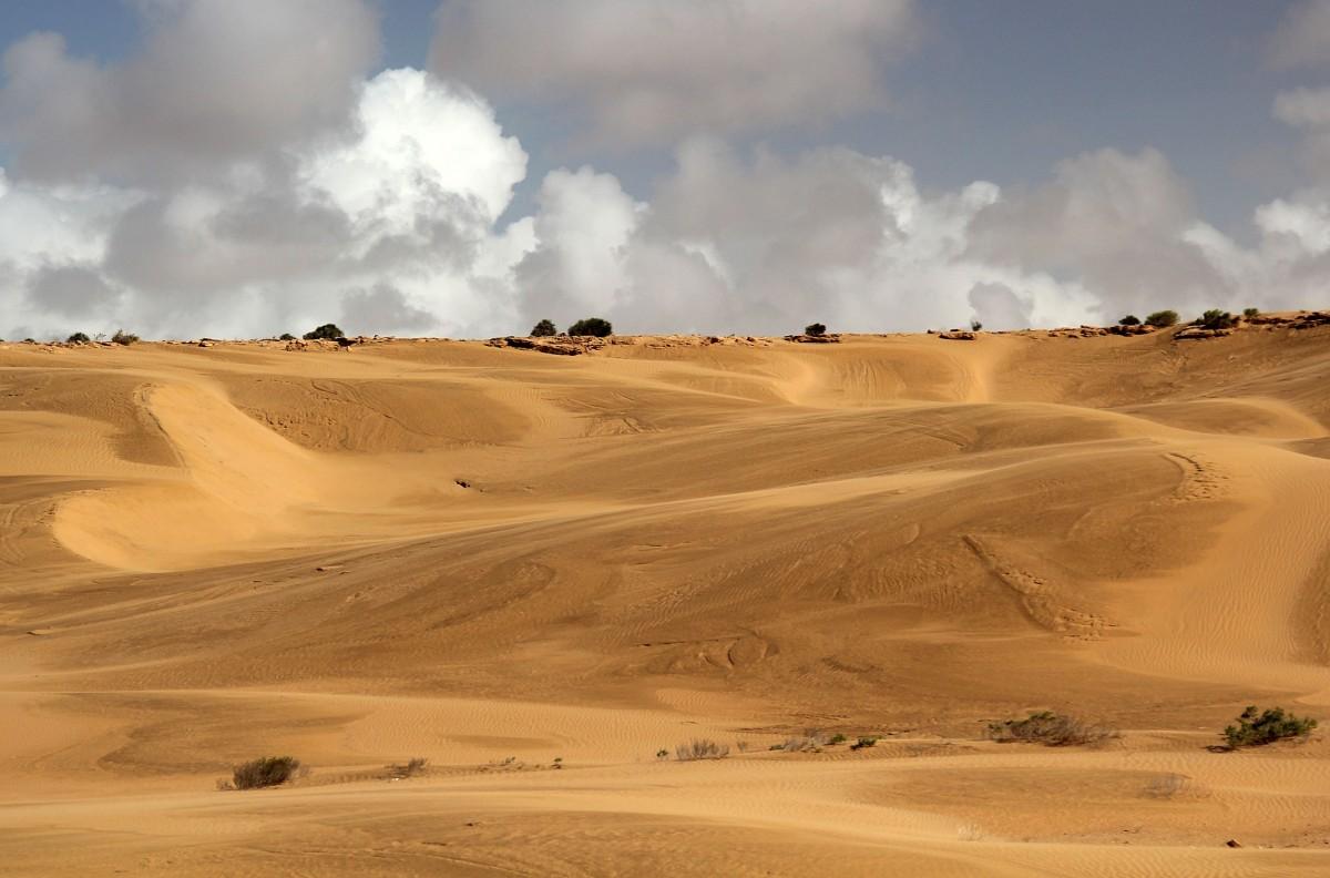 Zdjęcia: okolice Al-Ujun, Sahara Zachodnia, Deszczem malowane, MAROKO
