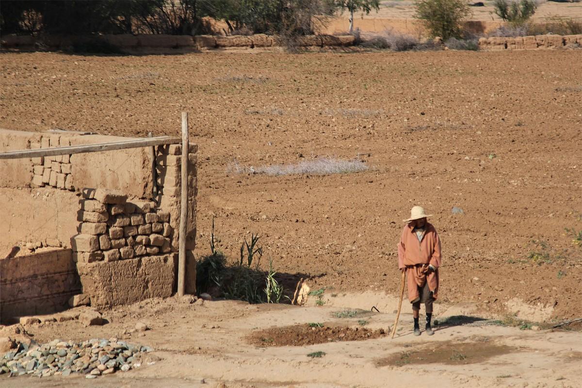 Zdjęcia: gdzieś po drodze, Maroko, Jaki to dziś dzień...?, MAROKO