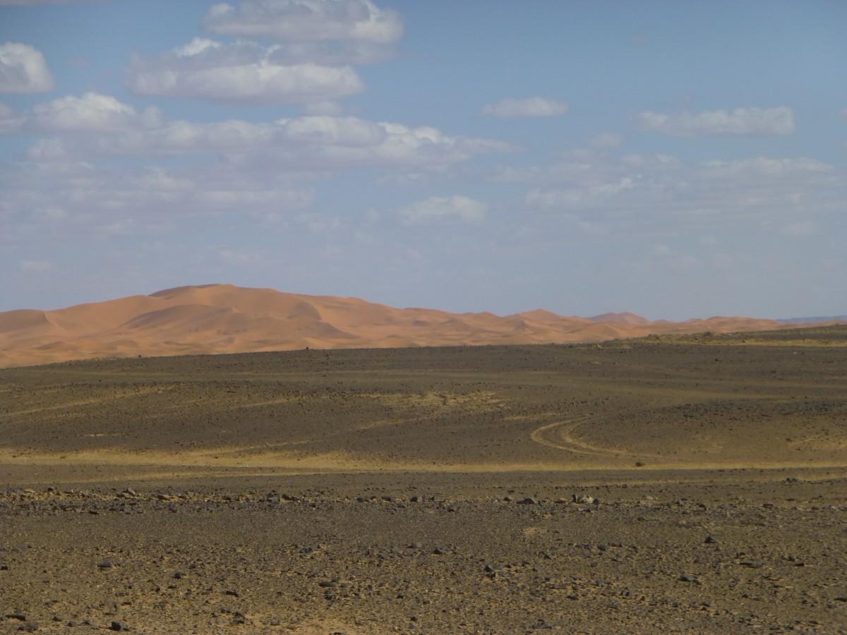 Zdjęcia: Sachara Wschodnia, -wschód, Sahara Wschodnia, MAROKO