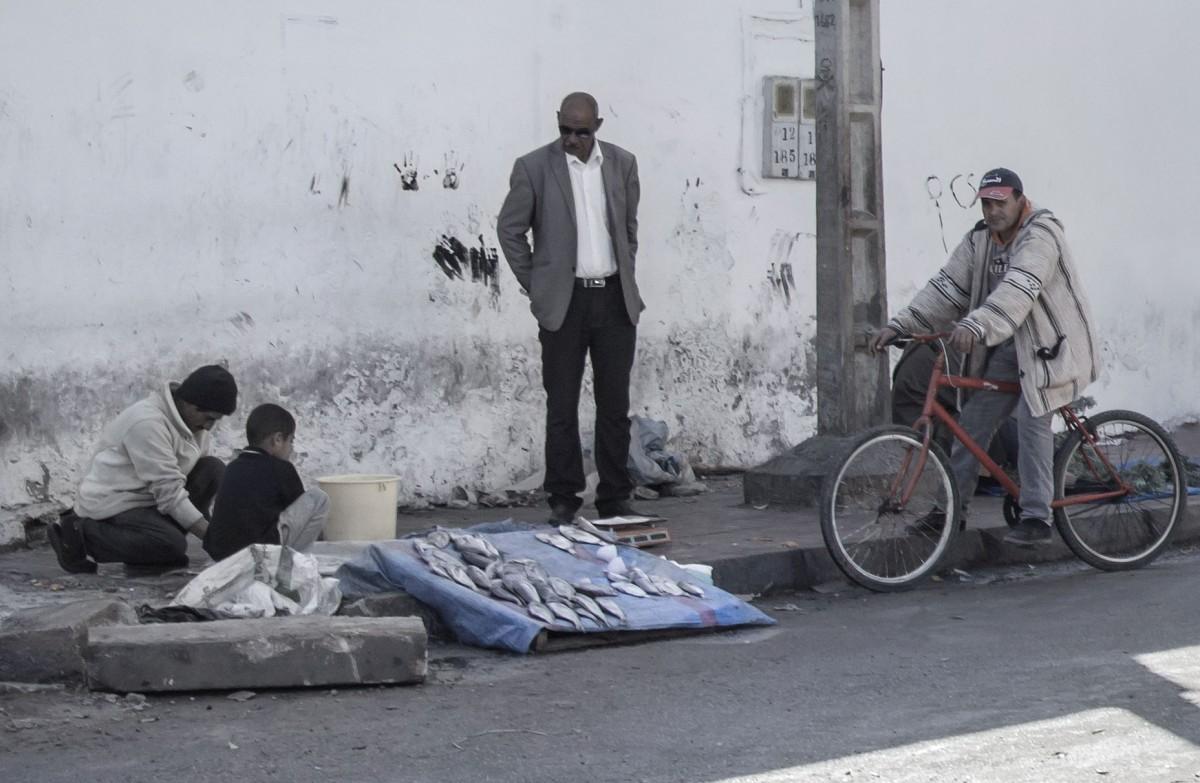 Zdjęcia: gdzieś po drodze, Maroko, Handel rybami, MAROKO