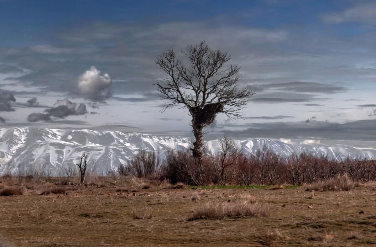 Zdjęcia: gdzieś po drodze, Maroko, Zima w Maroku, MAROKO
