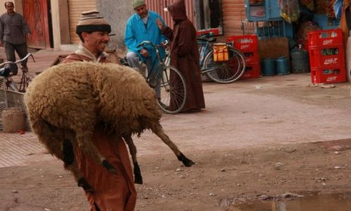Zdjecie MAROKO / Taroudant, Morocco / Suk berberyjski / Pan idzie pohandllowac