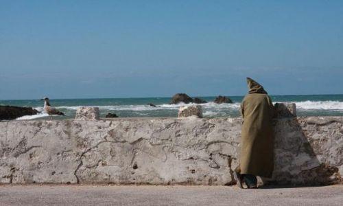 Zdjecie MAROKO / Essaouira / Targ Rybny / Czekając na marokanskie lato