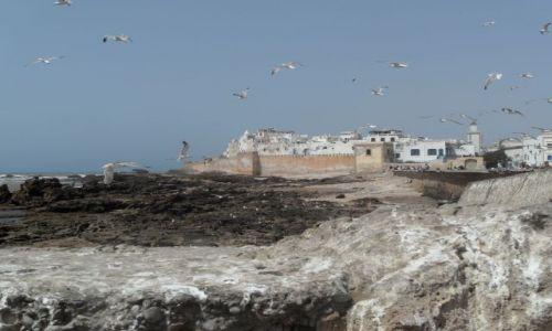 Zdjecie MAROKO / - / Esaouira / widok z portu