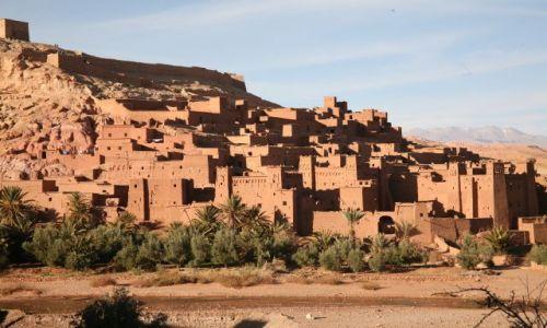 Zdjecie MAROKO / Tanger, Marrakesz. Szefszawan, Tafraout, Ouarzazate, Essaouira, Fez / Tanger, Marrakesz. Szefszawan, Tafraout, Ouarzazate, Essaouira, Fez / Maroko na dziko