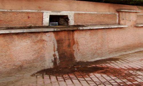 Zdjęcie MAROKO / - / Marrakesz / Wodopój dla spragnionych
