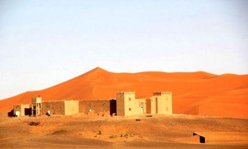 MAROKO / Sahara / okolice Erdfoud / Sahara #3