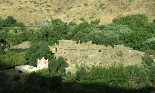 Zdjecie MAROKO / - / Maroko- południe, Góry Atlas / w gąszczu zieleni