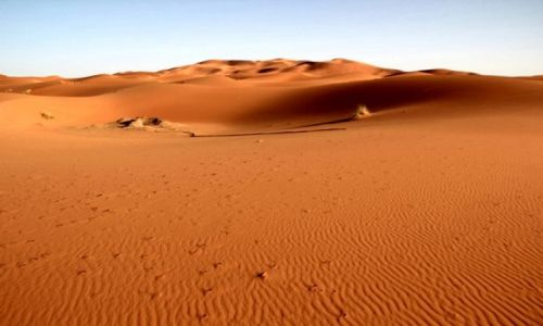 MAROKO / południowo-wschodni kraniec Tafilant / okolice Erfoud / Sahara #8