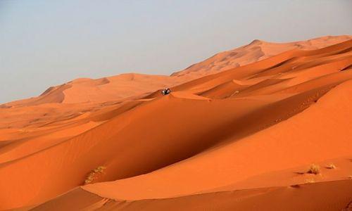 Zdjecie MAROKO / południowo-wschodni kraniec Tafilant / okolice Erfoud / Sahara - Erg Chebbi.