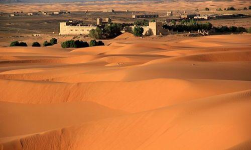 Zdjecie MAROKO / południowo-wschodni kraniec Tafilant / okolice Erfoud / Sahara #10