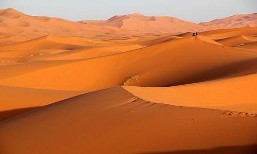 Zdjecie MAROKO / południowo-wschodni kraniec Tafilant / okolice ERDFOUD / Sahara #14
