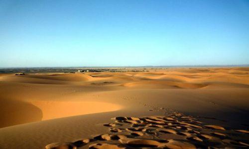 Zdjecie MAROKO / południowo-wschodni kraniec Tafilant / okolice Erfoud / Sahara - ślady na piasku.