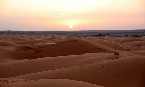 Zdjecie MAROKO / południowo-wschodni kraniec Tafilant / okolice Erfoud - Sahara / Zachód.