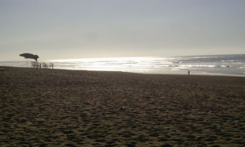 Zdjecie MAROKO / Kenitra / Kenitra / Plaża w Kenitra