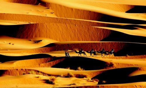 Zdjecie MAROKO / Poludnie / Merzouga / Maroko 25