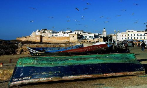 Zdjecie MAROKO / Poludnie / Assawira / Maroko 24