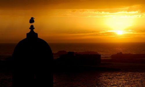 Zdjęcie MAROKO / Maroko / Essaouira / Zachodzik....