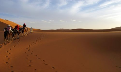 Zdjecie MAROKO / - / Sahara / It's Africa-NO