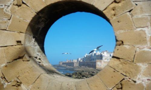 Zdjecie MAROKO / Sus-Masa-Dara / Essaouira / Essaouira