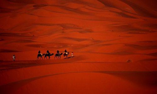 Zdjecie MAROKO / Południe / Merzouga / Maroko 100