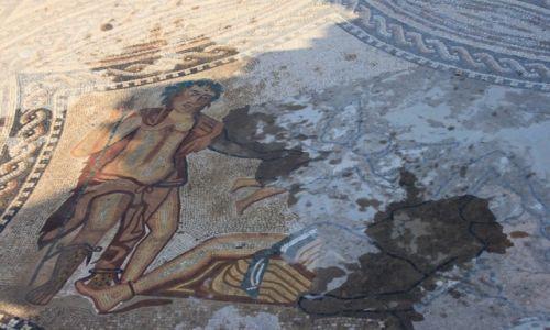 Zdjecie MAROKO / Volubilis / Volubilis / Mozaika z czasów rzymskich