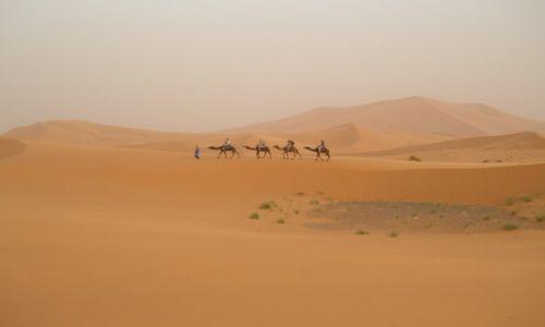 MAROKO / okolice Zagory / pustynia / Burza piaskowa na pustyni