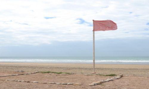 MAROKO / Maroko / Taghazout Beach / Plaże Maroka