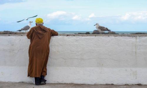 Zdjęcie MAROKO / Essaouira / medina / Port w Essaouirze
