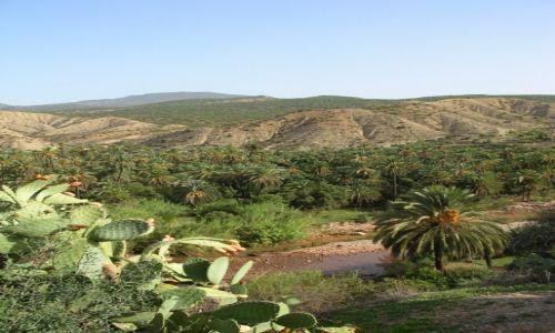Zdjecie MAROKO / okolice Agadiru  / droga do Imouzzer / Maroko to nie tylko pustynia