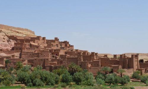 Zdjecie MAROKO / Ouarzazate / Ouarzazate / Zycie w Maroko