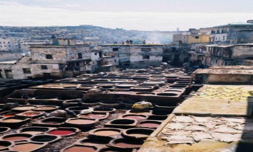 Zdjecie MAROKO / Fez / Medina / garbarnia w Fezie