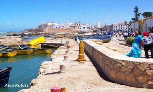 MAROKO / Południe / Essaouira / Essaouira - widok z portu na miasto