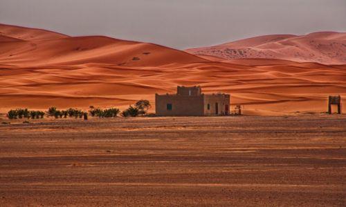 Zdjęcie MAROKO / - / Sahara / Sahara