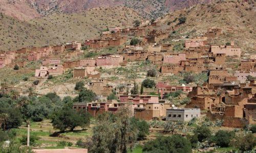 Zdjecie MAROKO / - / Taroudant / Berber village