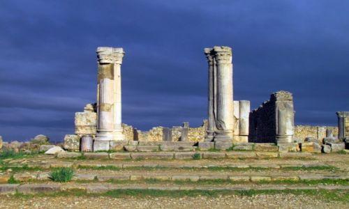 Zdjęcie MAROKO / Meknes / Volubilis / Ruiny rzymskiego miasta