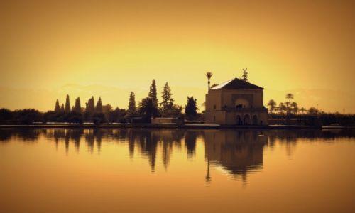 Zdjęcie MAROKO / Marrakech / Menara Ogrod / Menara Garden
