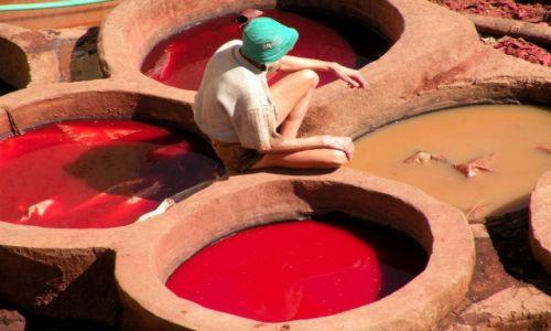Zdjęcie MAROKO / Fez / garbarnie / Kolorowe studnie