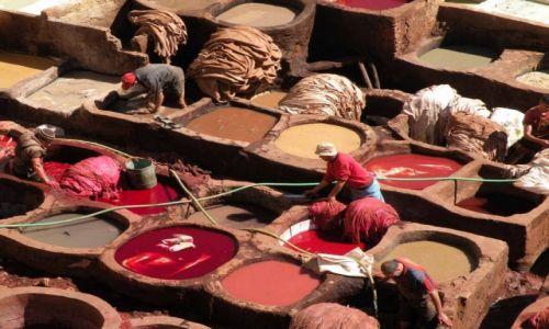Zdjęcie MAROKO / Fez / garbarnie / Kolorowe studnie 2