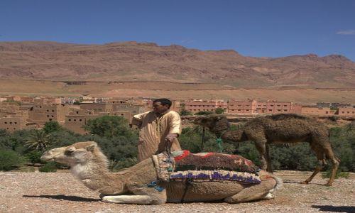 Zdjęcie MAROKO / Ouarzazate / Tinghir / Mama wielbłądzica z dzieckiem i ich pan