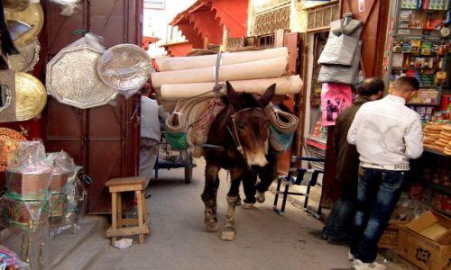 Zdjęcie MAROKO / Fez / souk / Transport towarów