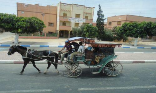 Zdjęcie MAROKO / . / . / alternatywa dla taxi
