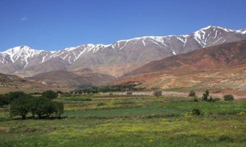 Zdjecie MAROKO / Góry Atlas / Przełęcz Tizi n\\\' Tichka / Doliny i góry