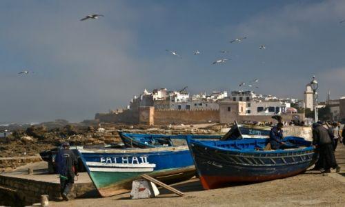 Zdjęcie MAROKO / - / Essaouira / Essaouira
