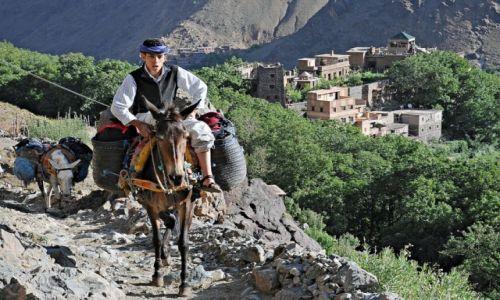 Zdjecie MAROKO / Atlas Wysoki / Szlak na Jabal Toubkal / Na szlaku