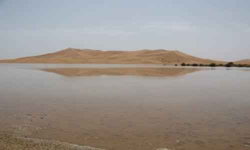 Zdjecie MAROKO / Erg Chebbi / Merzouga / Jezioro na pustyni