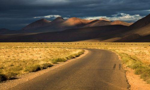 Zdjęcie MAROKO / Atlas Wysoki / Imalouane / w drodze do Imilchil