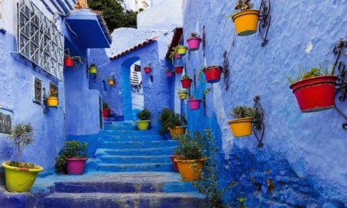 Zdjęcie MAROKO / Tanger-Tetuan / Chefchaouen / troszkę barwy