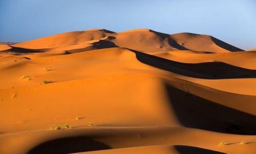 Zdjęcie MAROKO / Sahara / Erg Chebi / na pustyni